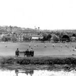 The Rye, 1955
